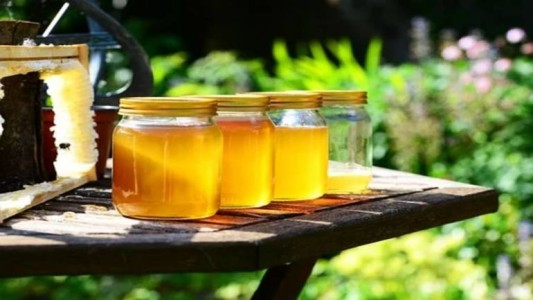 Most top brands are selling adulterated honey in India, shows CSE investigation