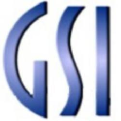 GSI Technology Inc