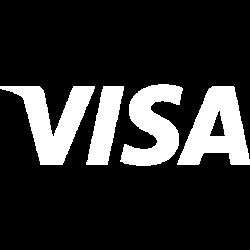 icon Visa Inc (V)