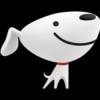 JD.com Inc.